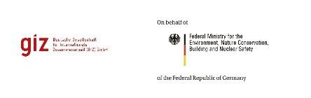 Deutsche Gesellschaft für Internationale Zusammenarbeit (GIZ