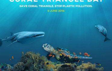 Happy Coral Triangle Day 2016: Save Coral...