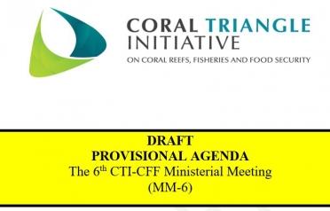 DRAFT PROVISIONAL AGENDA The 6th CTI-CFF...