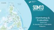 SOM 13 - Session 09 - GWG Report Presentations MEWG