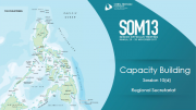 SOM 13 - Session 10 - Cross-cutting Themes Report Presentations Capacity Building