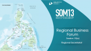 SOM 13 - Session 10 - Cross-cutting Themes Report Presentations RBF & BAC