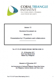 SOM 13 - Session 13 - Presentations of CTI Partners and Collaborators
